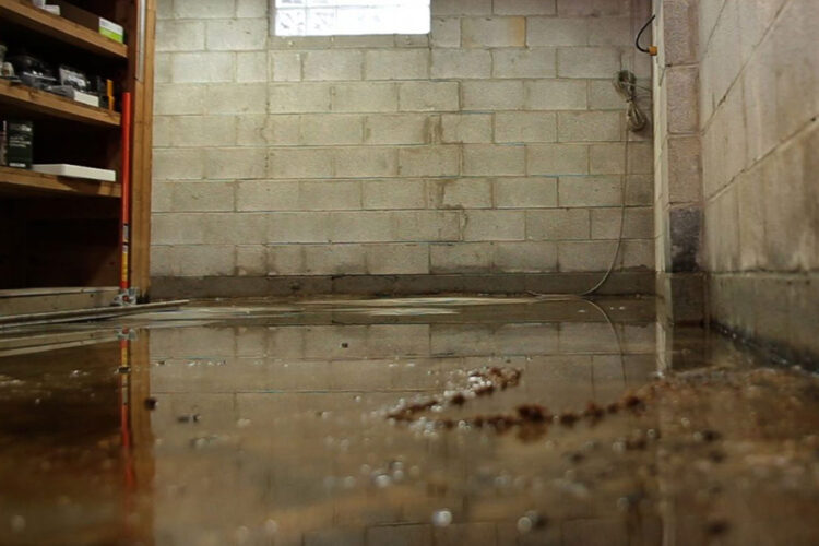 Important Indicators That You Need Basement Waterproofing Services Putnam County, NY